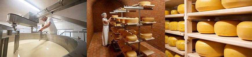 Bio-Käse vom Heinrichshof