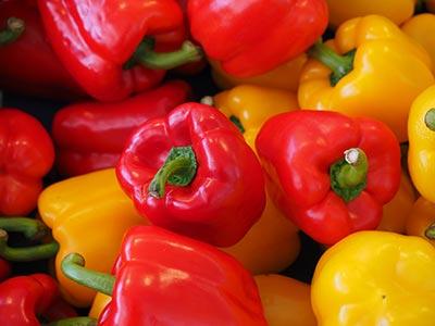 Rote und gelbe Bio-Paprika