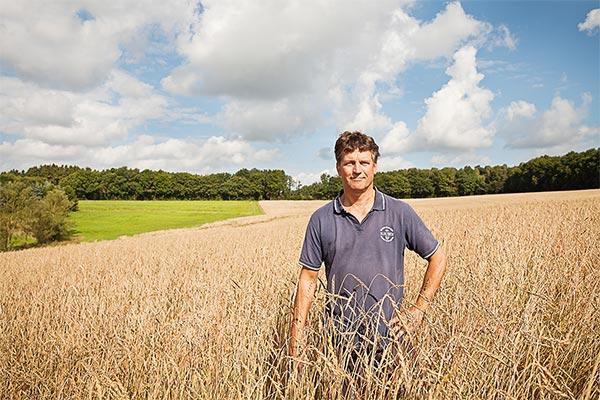 Konrad Mockenhaupt im Getreidefeld