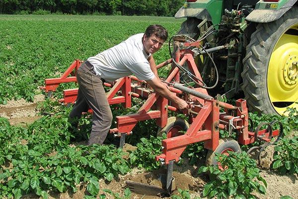 Konrad Mockenhaupt bei der Kartoffelernte
